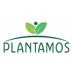 plantamos
